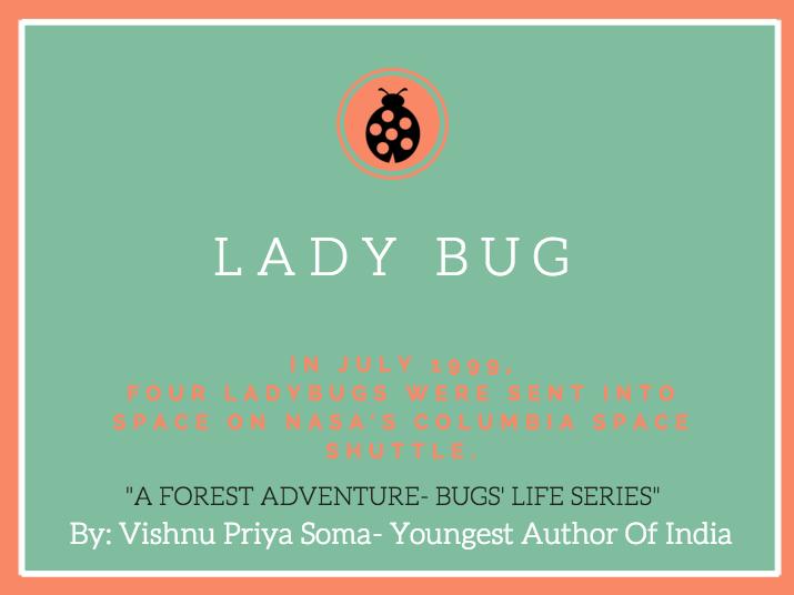 Bug Fact #006.png